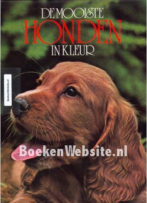 De Mooiste Honden In Kleur Ruud Haak Boeken Websitenl